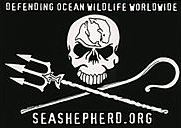 Seashepherd Banner